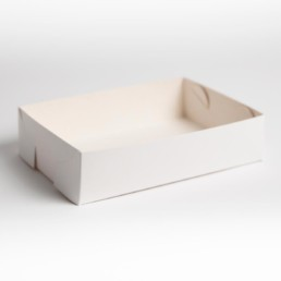 Food Packaging - Food Trays